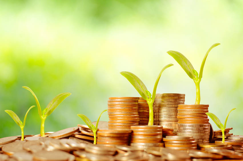 Money, Trees,Coins, Business growing concept